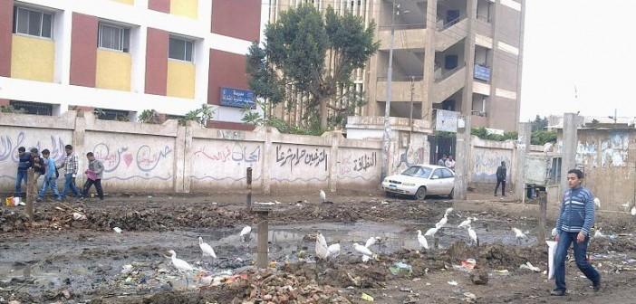 القمامة تحتضن وحدة محلية لقرية بالمنوفية.. وتصيب الطلاب بالأمراض