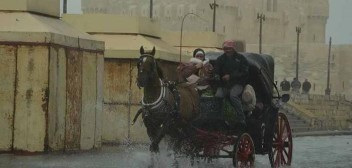 محافظة الإسكندرية تدفع بـ 15 سيارة صرف لمواجهة أمواج البحر!!