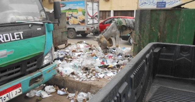 صور.. المخلفات تملأ بحر يوسف.. والقمامة تحاصر مديرية التعليم بالفيوم