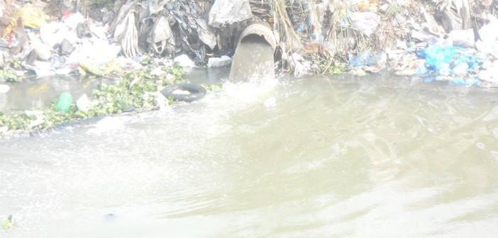 بالصور.. صرف صحي ومخلفات بيئية تروي أراضي «أبيس» بالإسكندرية
