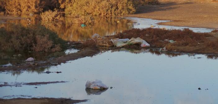 عزبة جرين «الأثرية» بالفيوم منزوعة المياه والخدمات