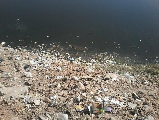 تلوث ضفاف النيل
