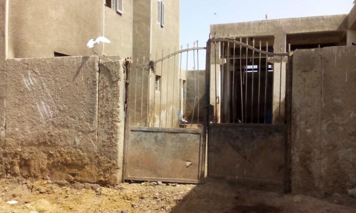 سلخانة المنشاه بمحافظة سوهاج تصوير محمد يحيي سوهاج