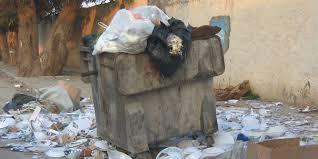 القاهرة والقمامة (صورة)