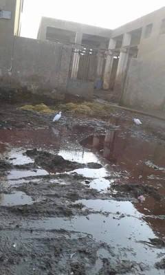 المشهد أمام سلخانة في سوهاج (تصوير أيمن جاد)