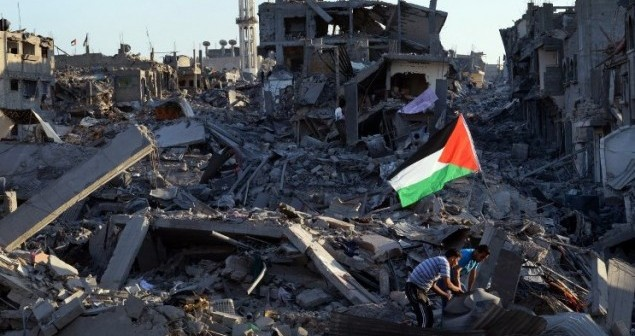 📝 فلسطين.. عن الحرب التي لم تنته بعد