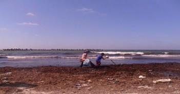 شاطىء النخيل ـ العجمي ـ الإسكندرية