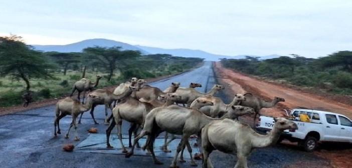 إثيوبيا بشكل تاني.. شاهد تجربة مصري في عمق دولة منبع النيل (صور)