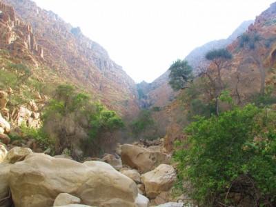 محمية جبل علبة.. من هنا مر الفراعنة والرومان وسطروا تاريخهم (صور وفيديو)
