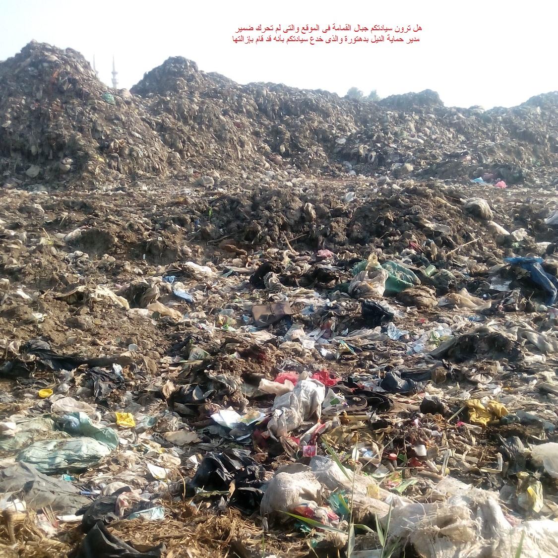مقلب قمامة على النيل في الغربية