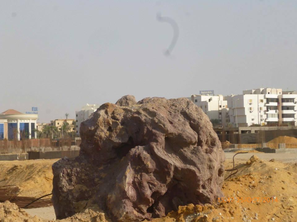 اغتيال تاريخ مصر الجيولوجي بـ«الغابة المتحجرة» (تصوير سالي سليمان)