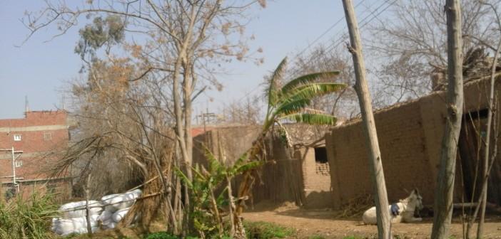 بالصور.. بيوت بالمنوفية سيتسبب تغيير مسار طريق (بنها ـ السادات) في هدمها