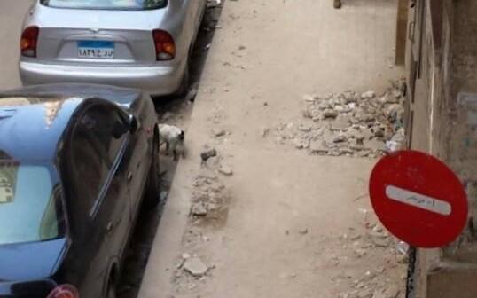 صورة.. هدم أرصفة شارع بالإسكندرية دون إعادة بنائه وترميمه
