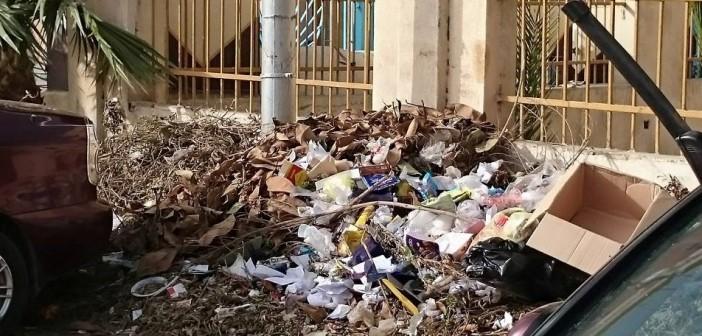 بالصور.. قمامة ومخلفات على بعد أمتار من ديوان محافظة الدقهلية