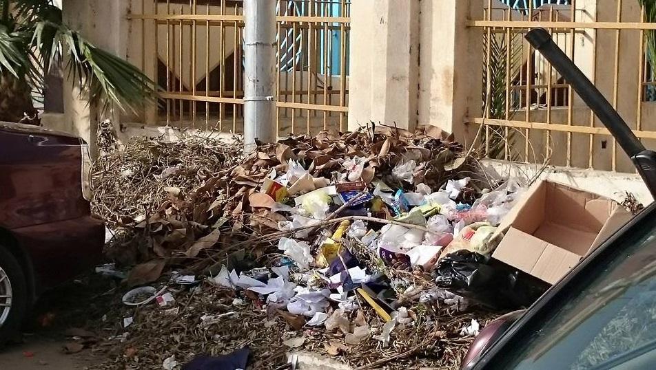 قمامة بمحيط ديوان محافظة الدقهلية2