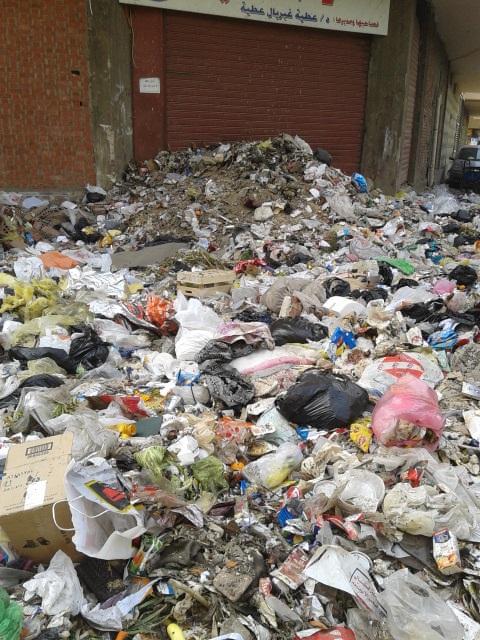 10 دقائق من قصر القبة.. القمامة تملأ «ترعة الجبل» بالزيتون