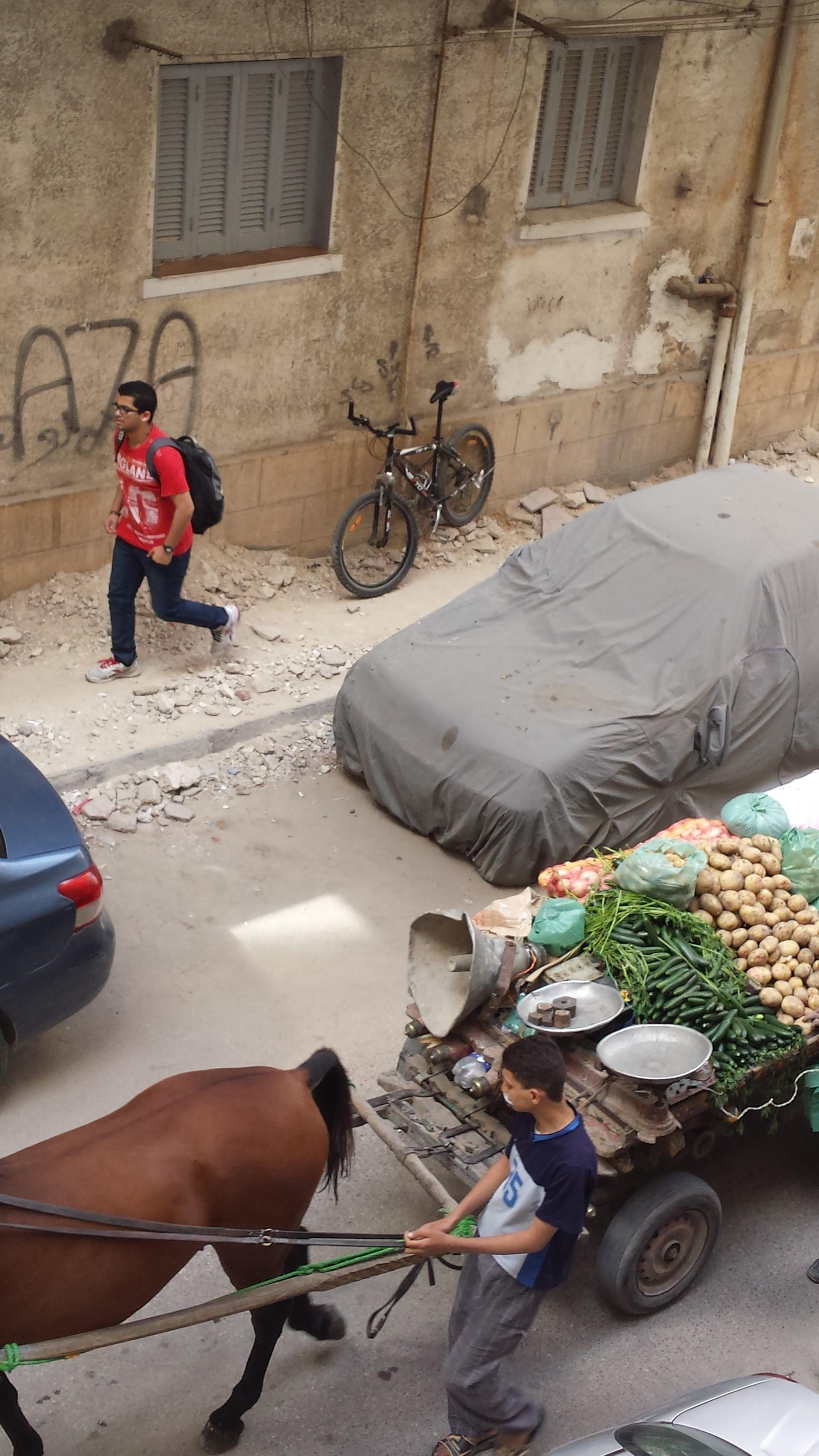باعة جائلين في الإسكندرية