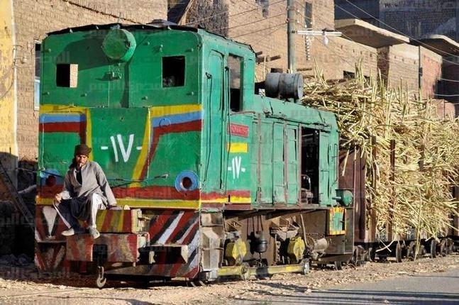 قطار قصب ديكوفيل ـ تصوير رضوان أبو المجد