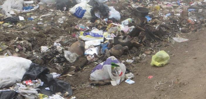 القمامة تملأ شوارع «تطاي» بالغربية دون تدخل المحليات (صور)