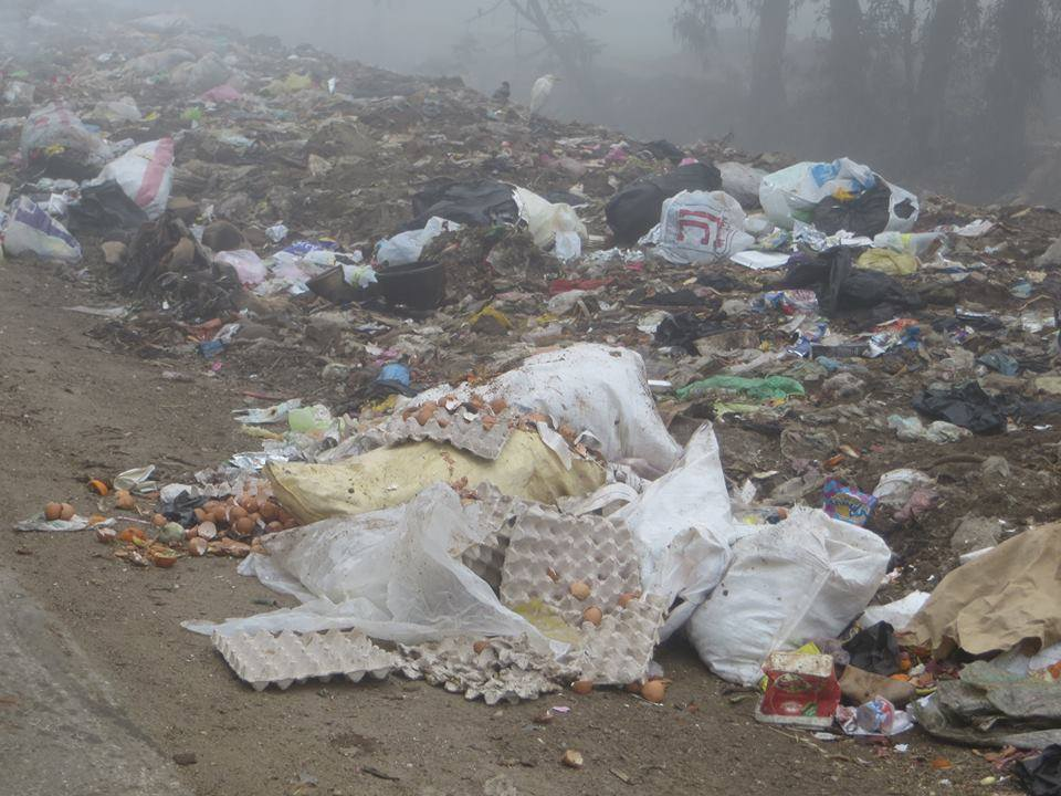 مشكلة القمامة في الغربية