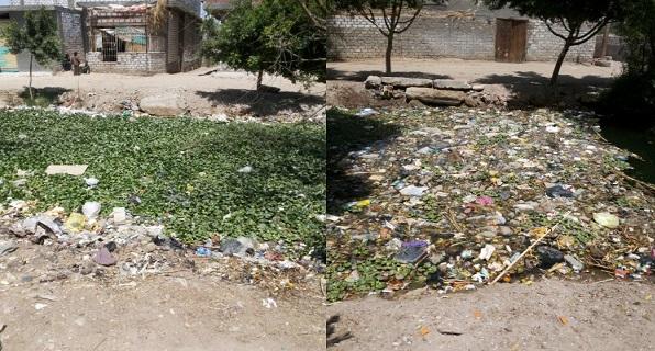 معاناة «بني شعران» بأسيوط.. والعيش وسط أكوام القمامة والحشرات (صور)