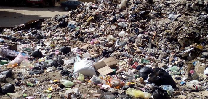 منظومة النظافة في الدقهلية «فاشلة».. «الشال» وطلخا والسنبلاوين مثالاً (صور)