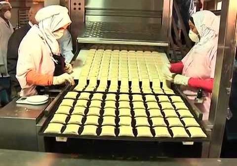 فصل وتشريد 300 عامل بمصانع التغذية المدرسية