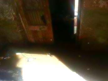 📷 «نوسا الغيط» بالدقهلية عائمة في الصرف.. ومُهددة بانتشار التيفود