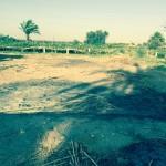 صور المزرعة 4