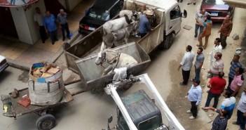 حملة لإزاالة الإشغالات بحي المنتزه بالإسكندرية