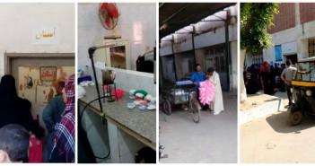 إهمال مستشفى شبرا في بهتيم قطط في المستشفى.. والأطباء يغلقون الأبواب