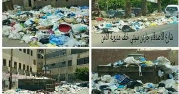 قمامة فى شوارع الإسكندرية
