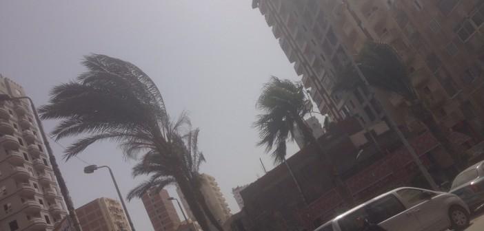 بالصور.. عواصف ترابية في الإسكندرية 📷