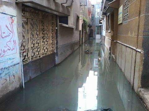 مياه الصرف تغرق قرية كرديدة بمنيا القمح في الشرقية2