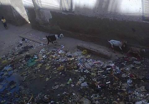 إلى محافظ سوهاج.. عيادة جهينة غارقة في القمامة والصرف الصحي