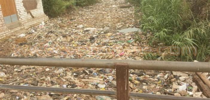 تفاقم أزمة القمامة يؤرق أهالي «دروة» بالمنوفية 📷