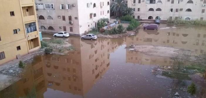 صورة.. مياه الصرف تضرب مساكن التأمين بأسوان 📷