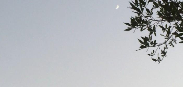 لحظة ظهور القمر في وقت الغروب 📷