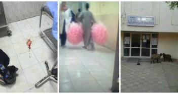 الإهمال في المستشفيات الحكومية.. دماء وحيوانات في الوحدات الصحية