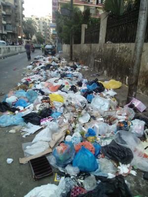 قمامة في الطريق إلى استراحة محافظ الإسكندرية