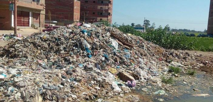 بالصور.. تراكم القمامة بمنطقة آخر الترعة في طنطا يثير غضب المواطنين