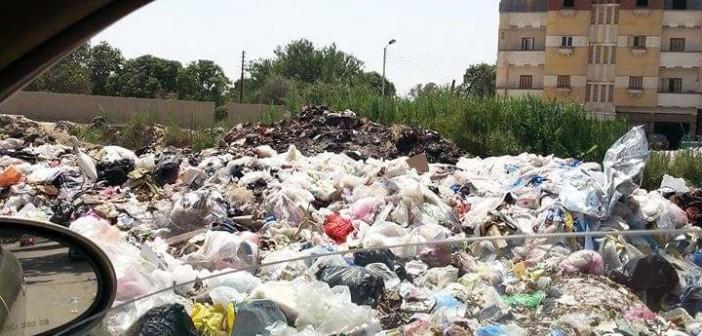 بالصور.. انتشار القمامة في حي السلام وطريق بورسعيد بالإسماعيلية 📷