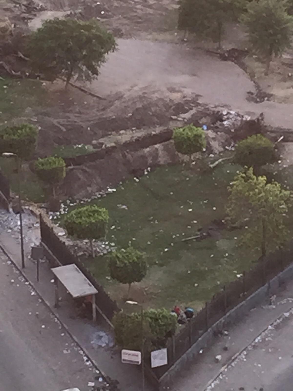 قطع أشجار بحديقة أغاخان العامة بشبرا.. ومواطنون: «عمرها يزيد عن 200 عام»