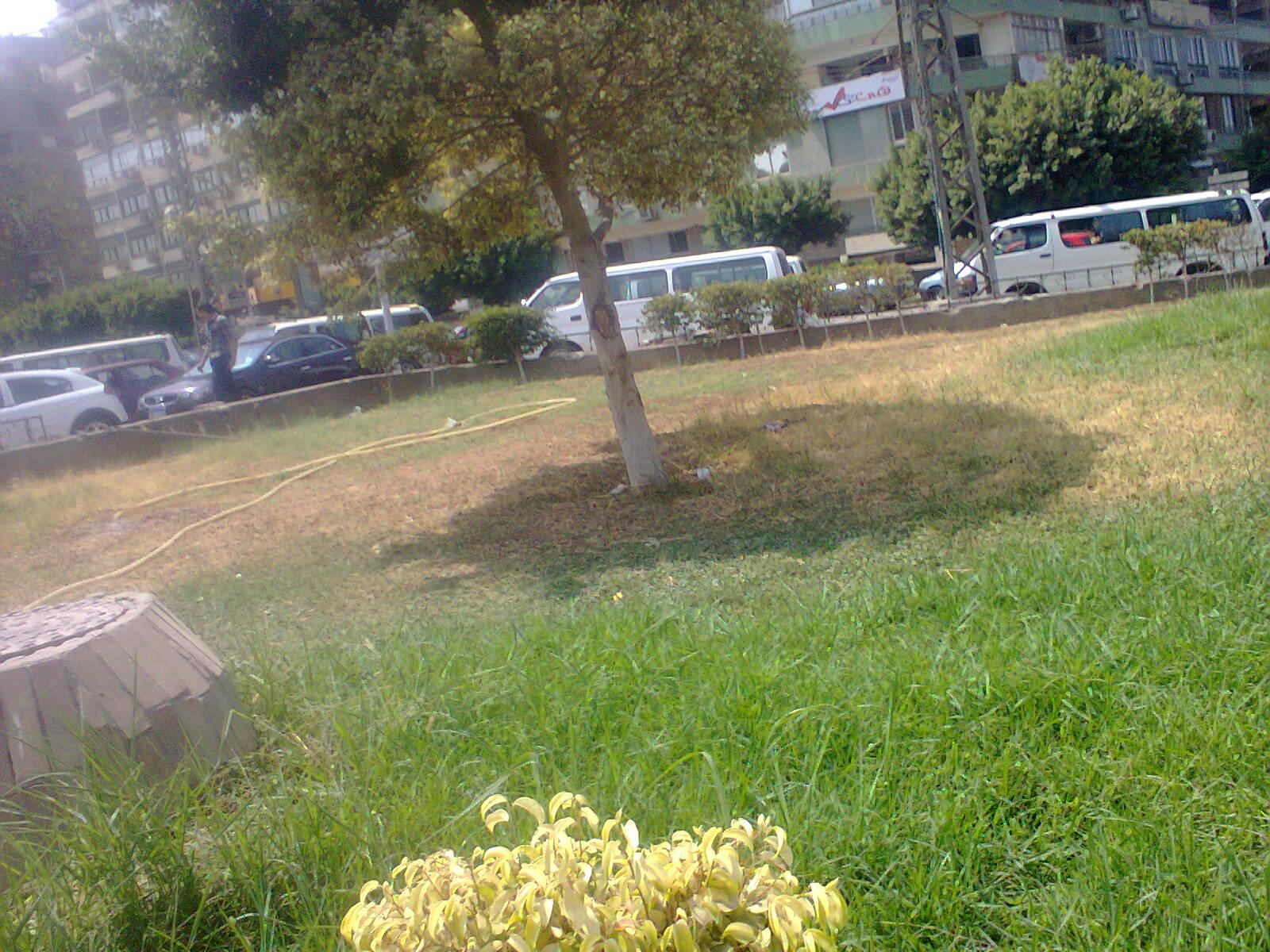 نقل موقف أحمد حلمي إلى شارع أمام الكلية الحربية