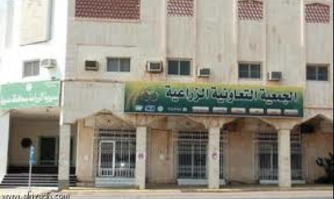 مستندات.. جمعية زراعية بالشرقية تتلاعب في «منحة الفلاحين» التي أقرها الرئيس 📷