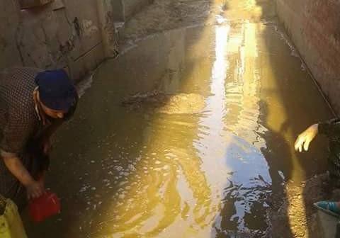 بالصور.. مياه الصرف تضرب بيوت المواطنين في «كفر الروك» بالدقهلية