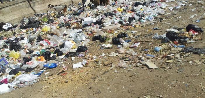 بالصور.. القمامة مشهد دائم في شوارع المرج الجديدة
