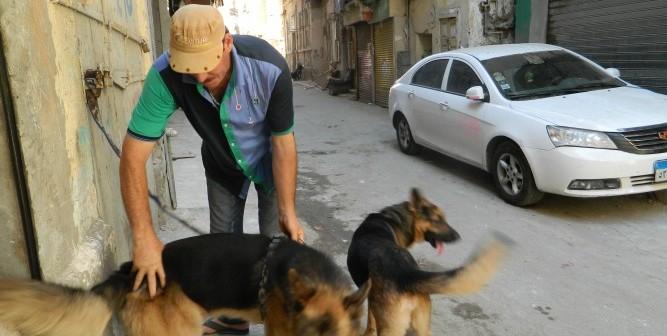 📷 هواية تربية الكلاب في الأحياء الشعبية بالإسكندرية (صور)