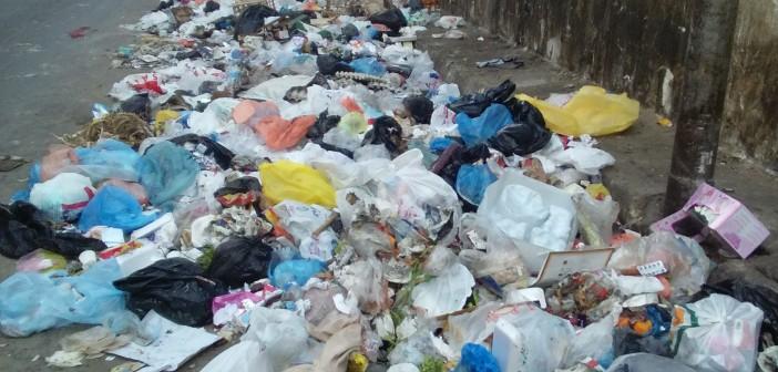 بالصورة.. تراكم القمامة في الطريق إلى استراحة محافظ الإسكندرية 📷