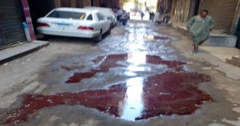 شبرا تخالف حظر ذبح الأضاحي في الشوارع